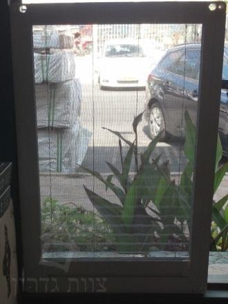 משהו רציני רשת לחלון | רשת יתושים שקופה | צוות-גדרון DN-79