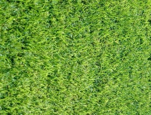 מיוחדים דשא אלטורו - דשא מוכן איכותי במחירים המשתלמים ביותר! עם אחריות קליטה MI-08