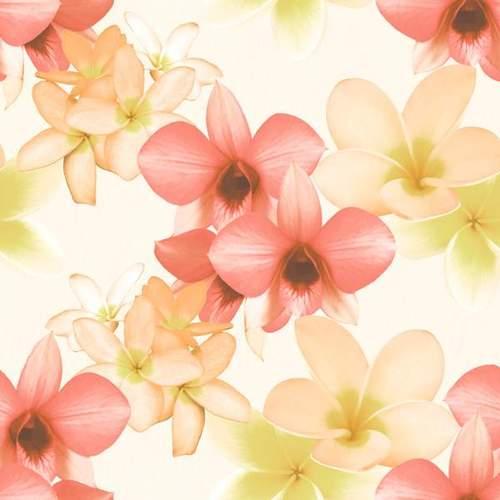 פרחי �קיץ